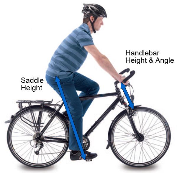 bike-posture