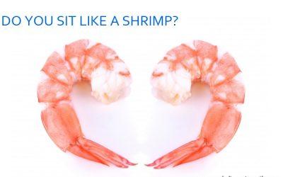 Don't sit like a shrimp