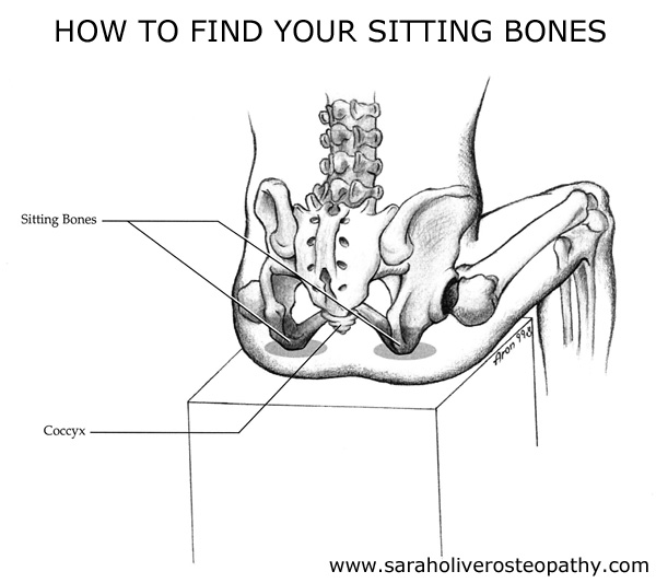Sit on Your Sitting Bones for Less Back Pain